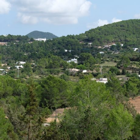 Plot with a license for sale in San Jose, Ibiza.