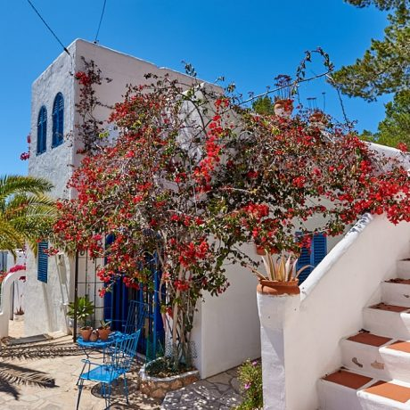 Traditional villa for sale near Cala Salada, Ibiza.